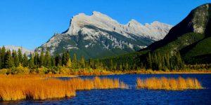 North Alberta Gold Buyer - Grand Prairie, Wood Buffalo